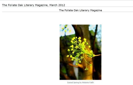 Foliate oak 1