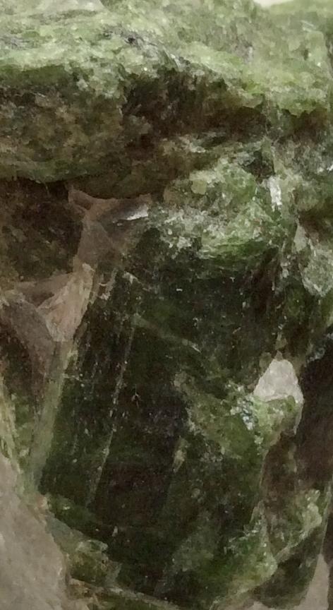 photo (22)