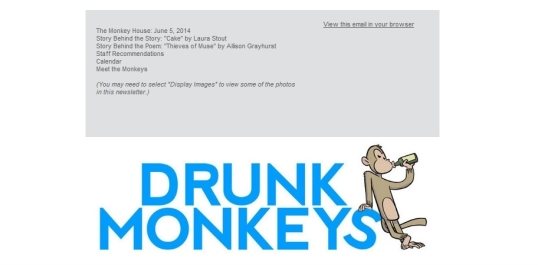 Drunk Monkey Interview 7