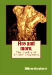 Fire and more. front cover