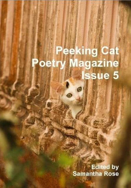Peeking cat poetry cover