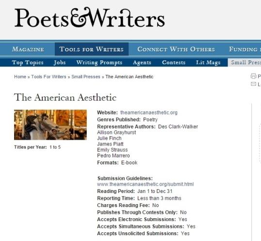 American Aesthetic 7