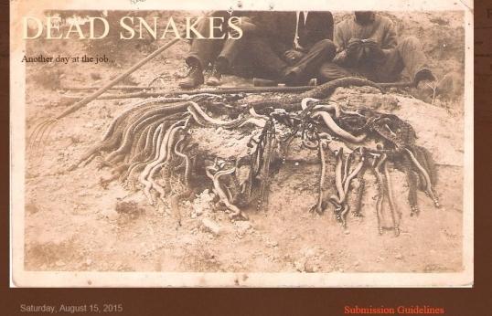 Dead Snakes 2015 1