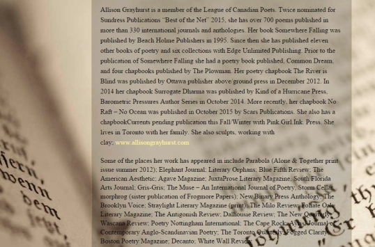 Inscribed Museum Literary Zine 3