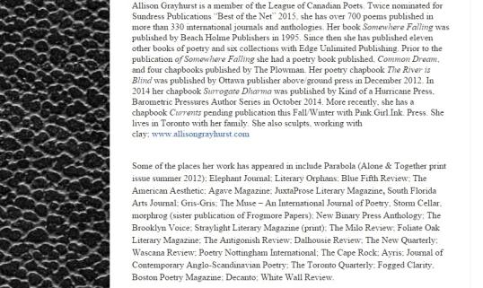 Stone Face Literary Zine 3