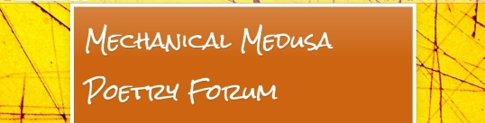 Mechanical Medusa Poetry Nov third 1