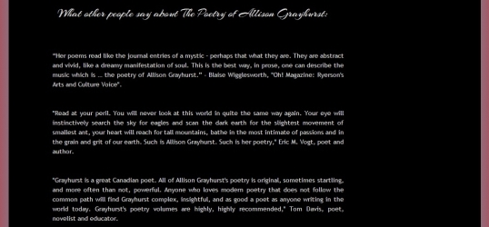 Creative Talents Unleashed author page 3