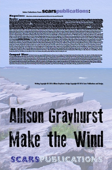Make the Wind back cover