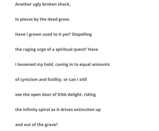 Random Poet Tree 9