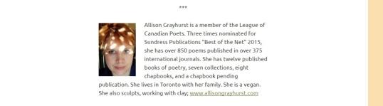 The Literary Nest 3