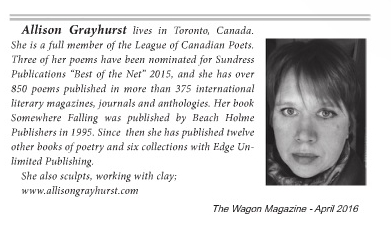 The Wagon magazine issue bio