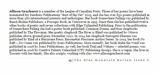 the-blue-mountain-review-4