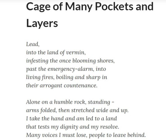 Impspired Cage of Many Pockets 1