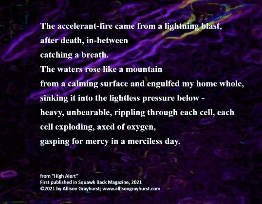 Allison Grayhurst - excerpt from High Alert (4)