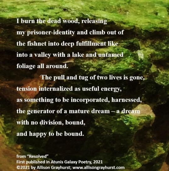 Allison Grayhurst - excerpt from Resolved